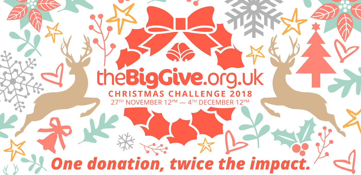 Christmas Challenge.The Big Give Christmas Challenge 2018 Doctors Of The World