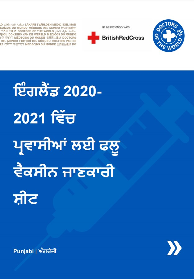 Punjabi Flu Vaccine Info Sheet